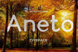 aneto-font2-